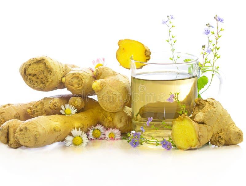 Smakowita ziołowa herbata świeży imbir i ziele zdjęcia royalty free