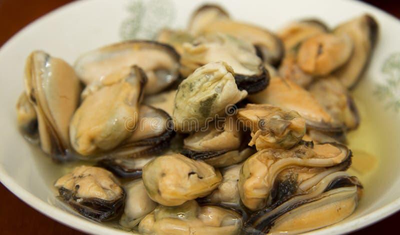 Smakowity oliwiący kiszony mussels iin talerz na stole zdjęcia stock