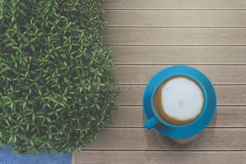 Smakowity pić, błękitna filiżanka cappuccino kawa, kwiatu wzoru mleko, naprzód zieleń krzak, na rocznika drewnianym stole i, odgó zdjęcie stock