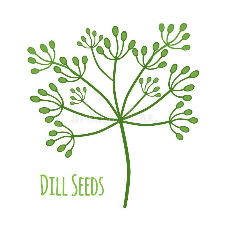 Smaktillsatsdill Smaktillsatsfrö, växt- växt Plan stil också vektor för coreldrawillustration royaltyfri illustrationer