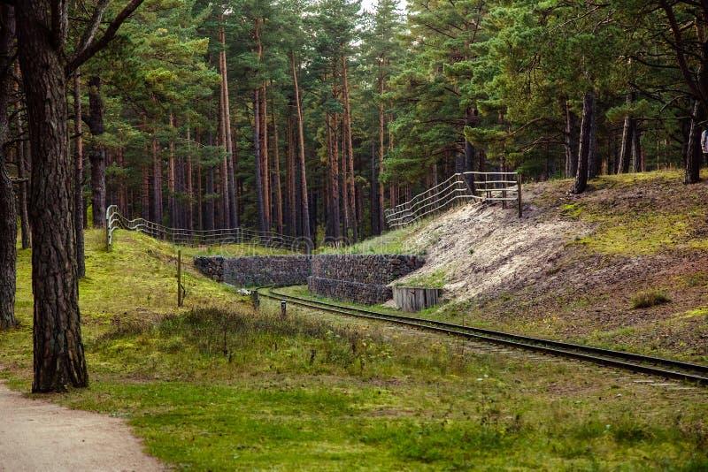smal järnväg för gauge royaltyfria foton