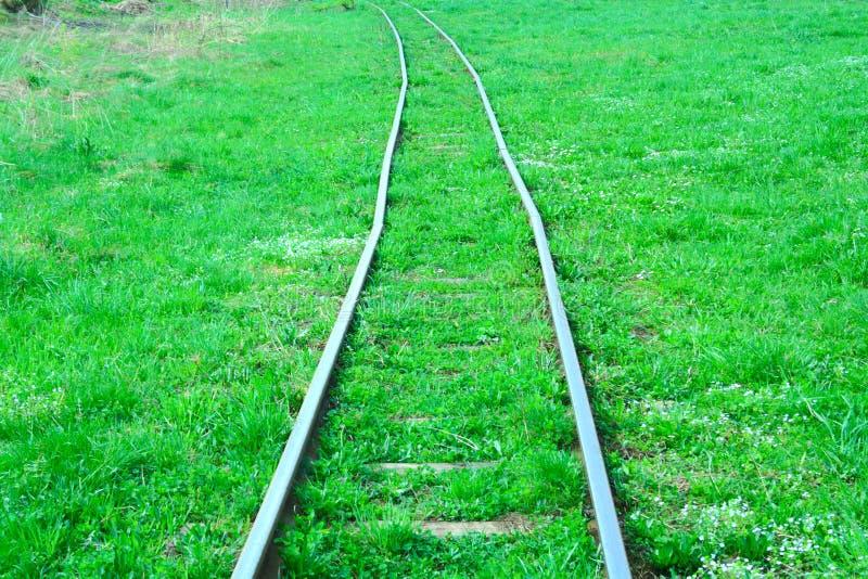 smal järnväg för gauge royaltyfri foto