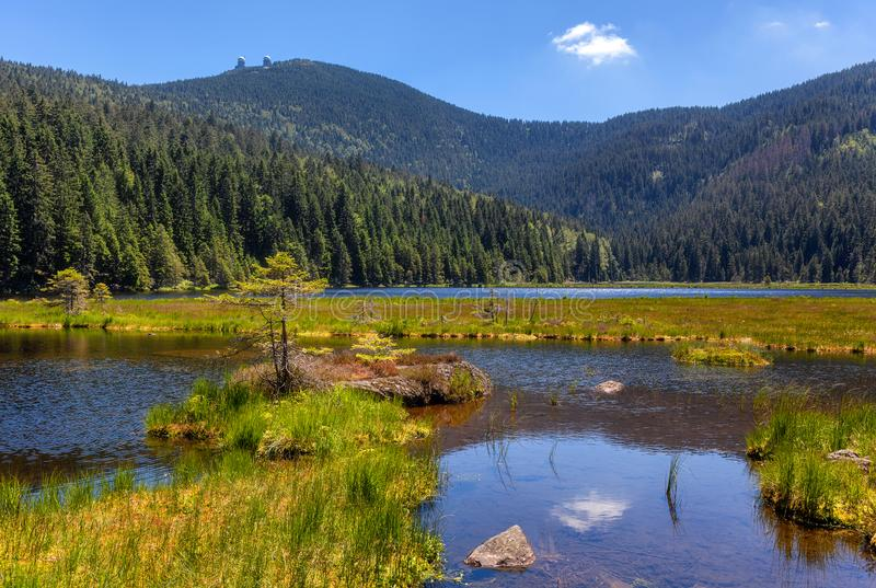 Smal sjö på stor arber royaltyfria bilder