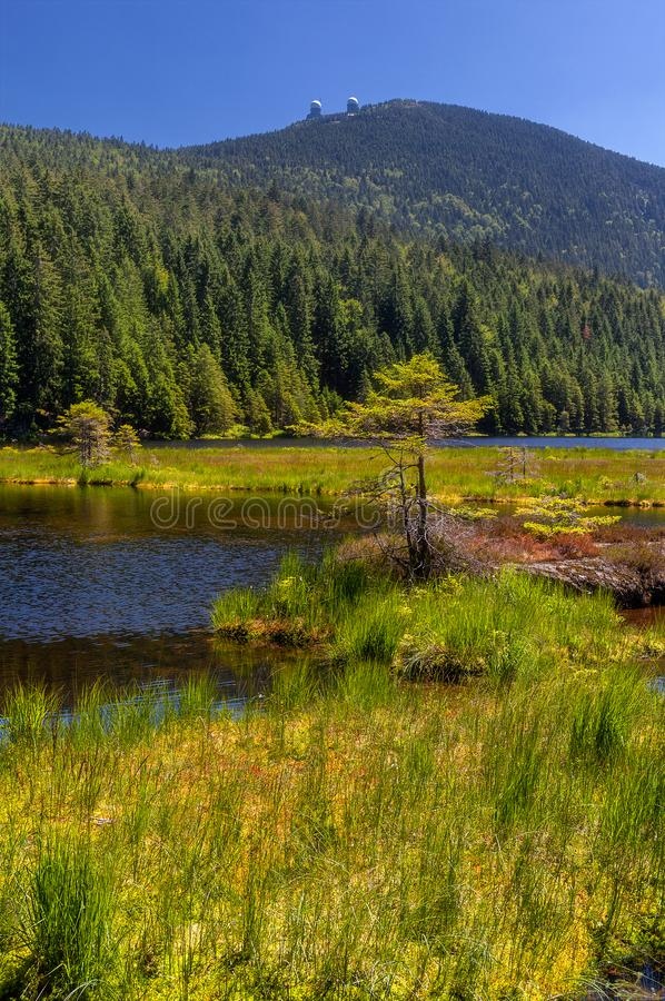 Smal sjö på stor arber arkivbilder