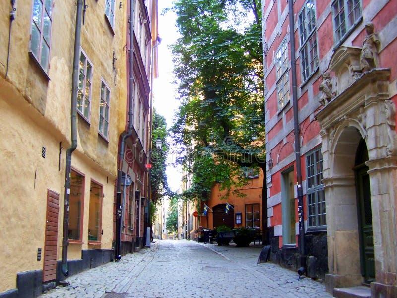 smala gator av Stockholm med gröna växter och träd royaltyfri bild
