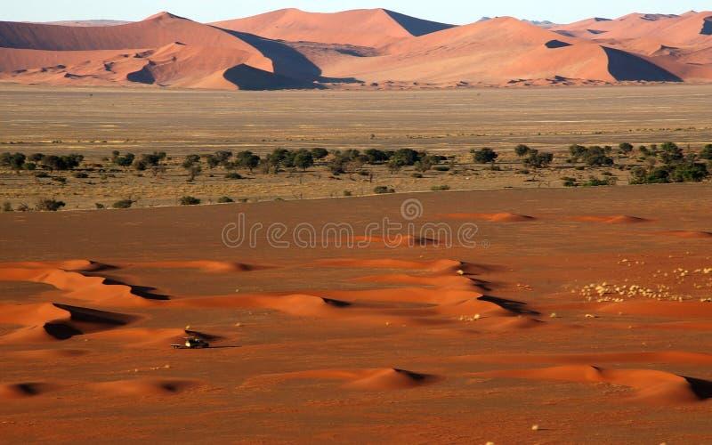 Small 4x4 in big namib desert stock photography