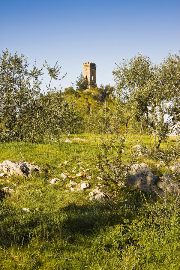 Small abandoned watchtower stock image