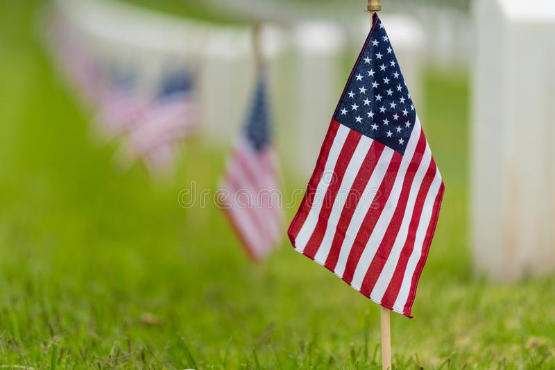Small American flag at National cemetary - Memorial Day display royalty free stock images