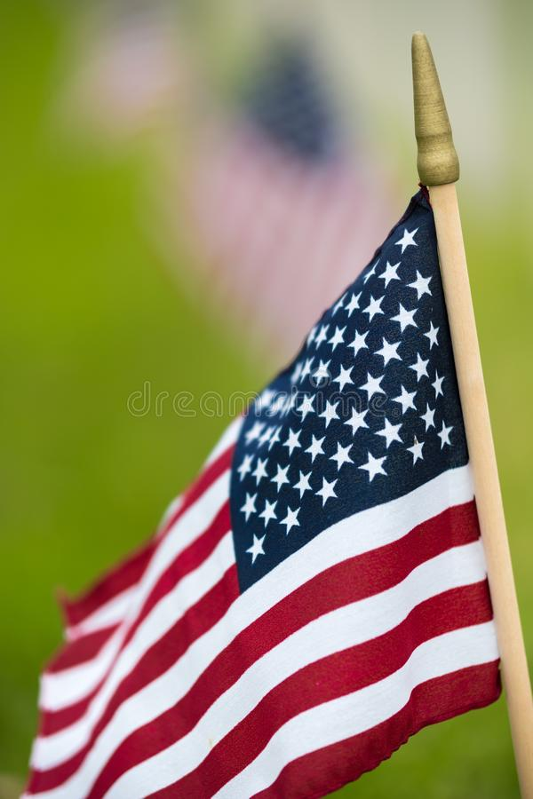 Small American flag at National cemetary - Memorial Day display royalty free stock photo