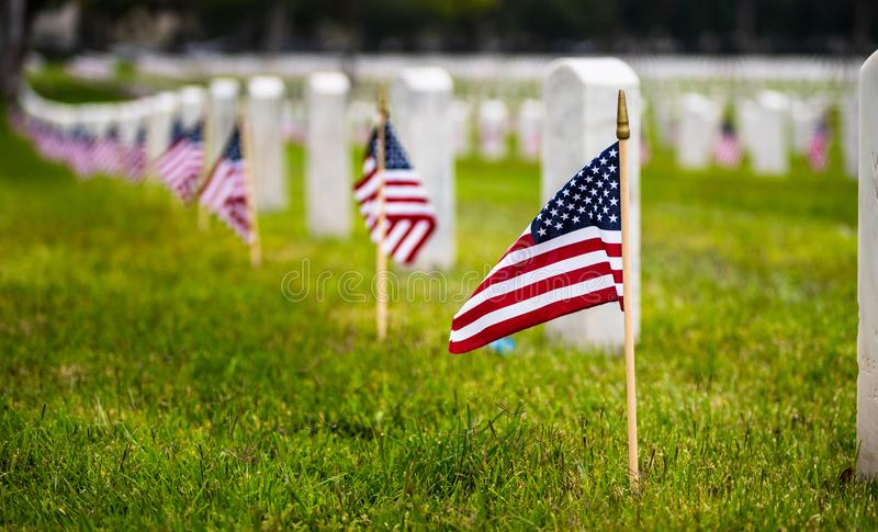 Small American flag at National cemetary - Memorial Day display royalty free stock image