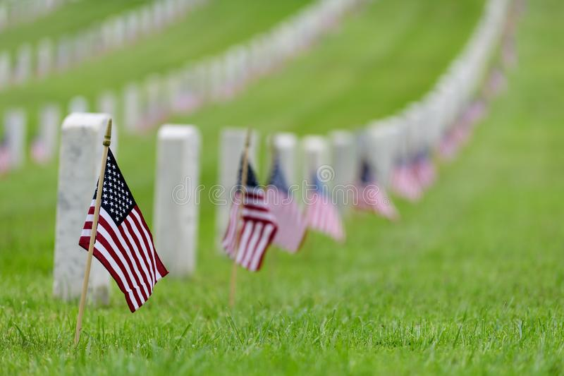 Small American flag at National cemetary - Memorial Day display royalty free stock photography