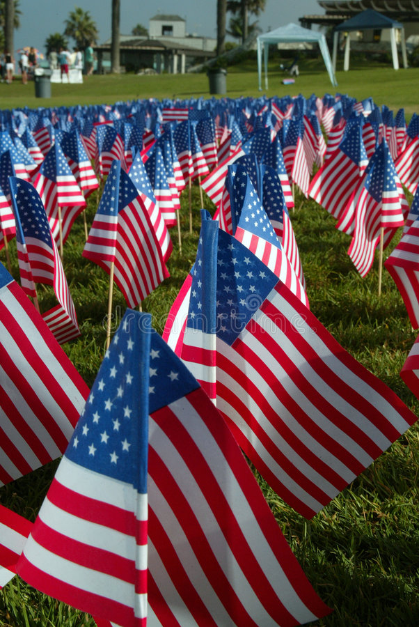 Free Small American Flags In The Ground Royalty Free Stock Images - 815869