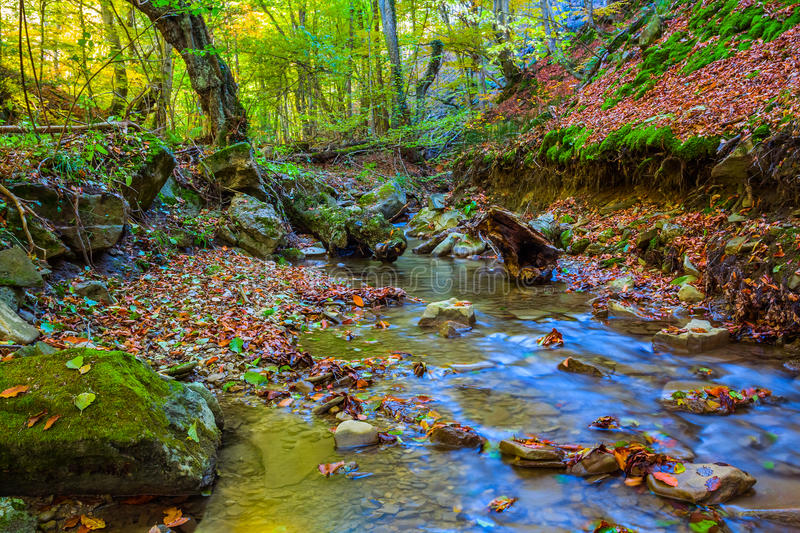 Small autumn canyon scene. Small autumn canyon river scene stock image