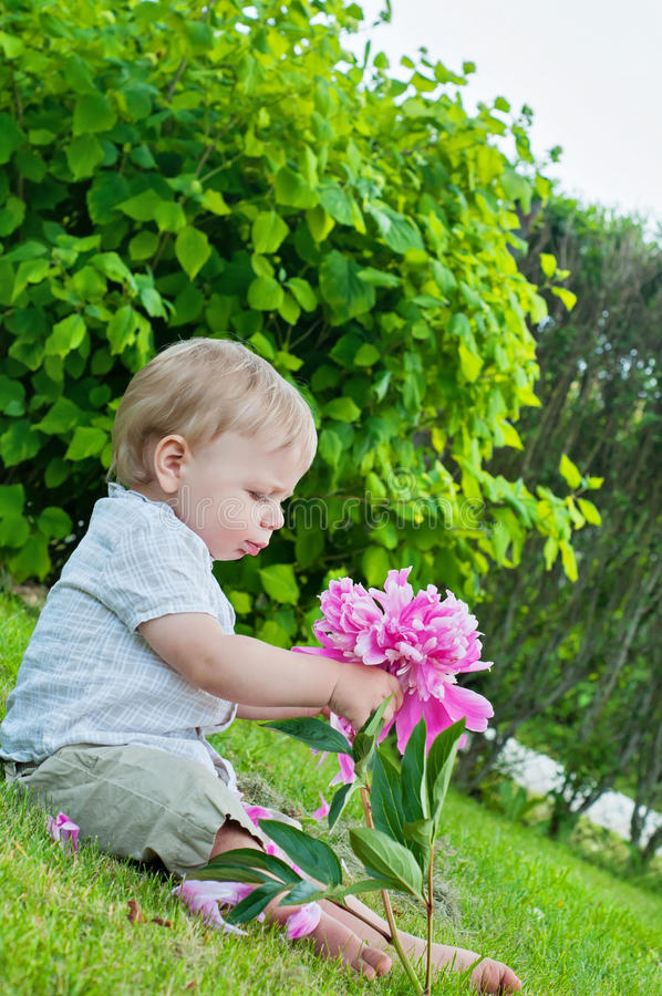 Small baby boy holding pink flower in his hand stock image