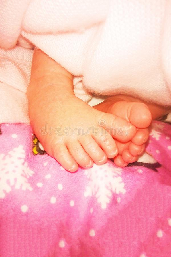 Baby feet in diapers. The first weeks of life. royalty free stock photo