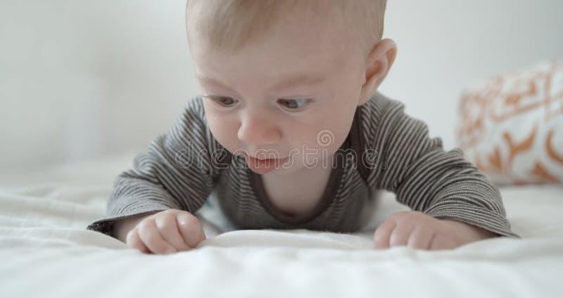 Small baby girl happy infant stock photo