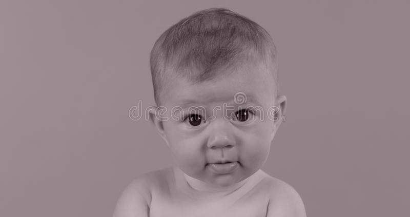 Small baby girl head shot royalty free stock photography