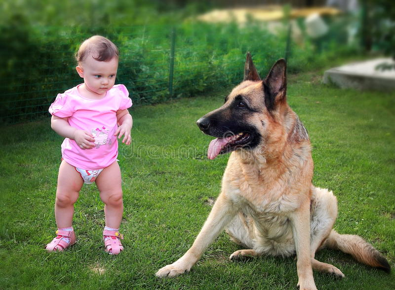 Small Baby Serious Looking On Dog Stock Photos