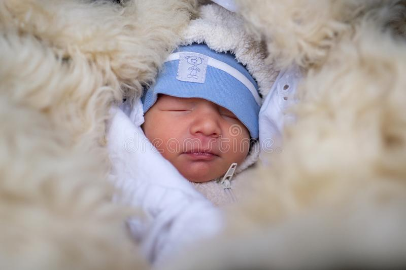 Small baby sleeping in winter royalty free stock image
