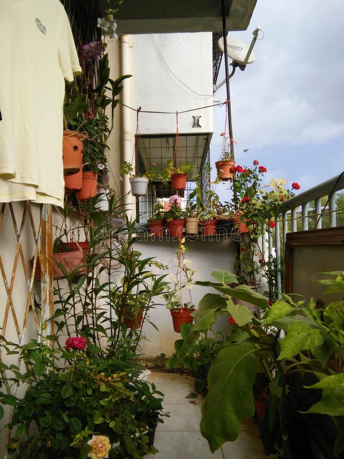 Small Balcony Garden royalty free stock images