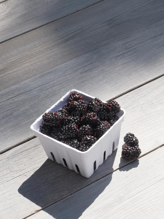 Small basket of a pint, 550ml, of freshly picked blackberries on a garden work table in the sunshine stock photo