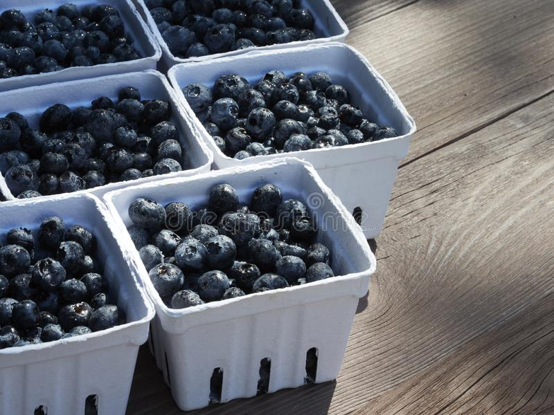 Small baskets of farmers market ready pints, 550ml, of freshly picked blueberries on a garden work table stock photo