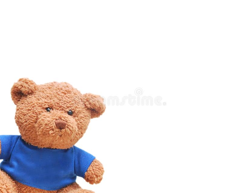 Small bear wear a blue shirt isolated with white background. Small brown bear wear a blue shirt isolated with white background. Bear is a most popular toys for royalty free stock photo