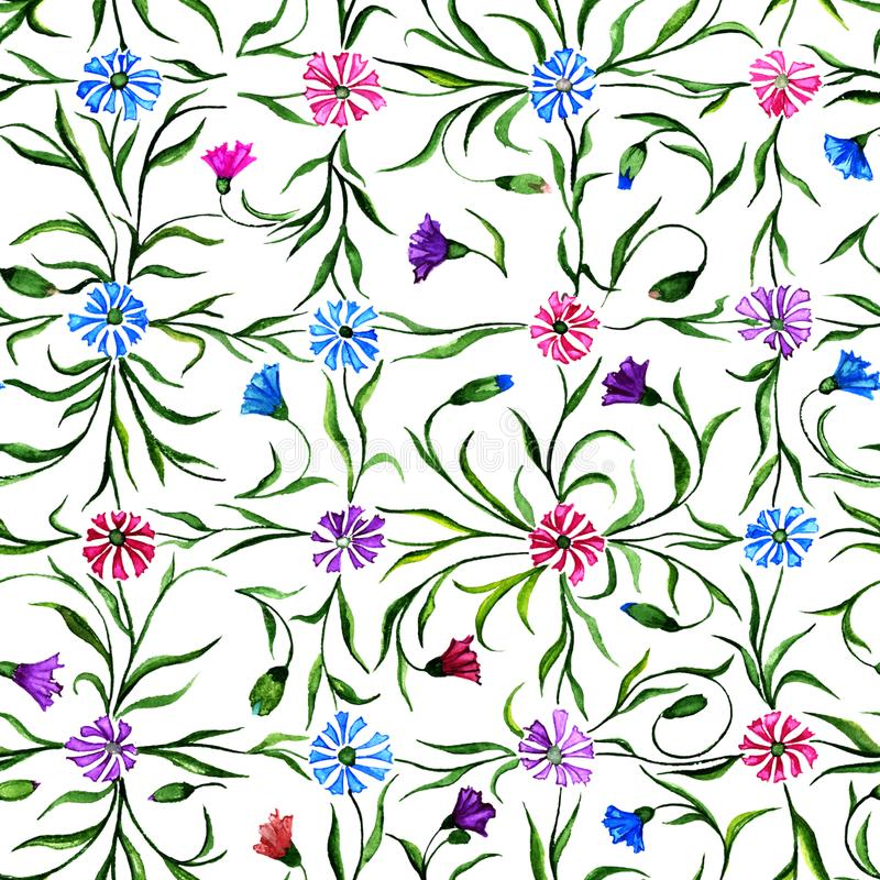 Small beautiful flowers with leaves on white background. Bright cornflowers in check seamless pattern. Watercolor painting. royalty free illustration