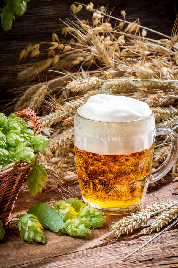 Small beer with a large foam royalty free stock image