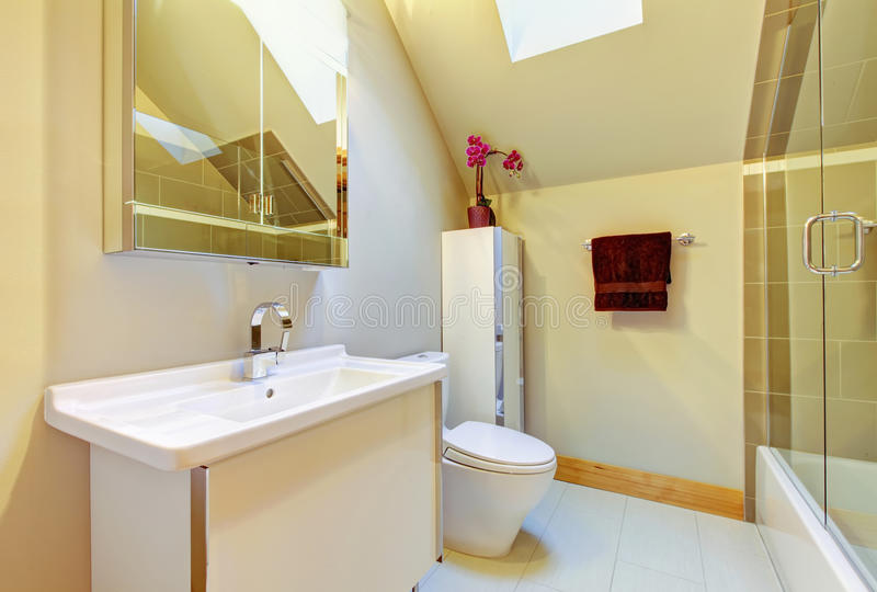 Small beige bathroom with shower, toilet and vaulted ceiling royalty free stock image