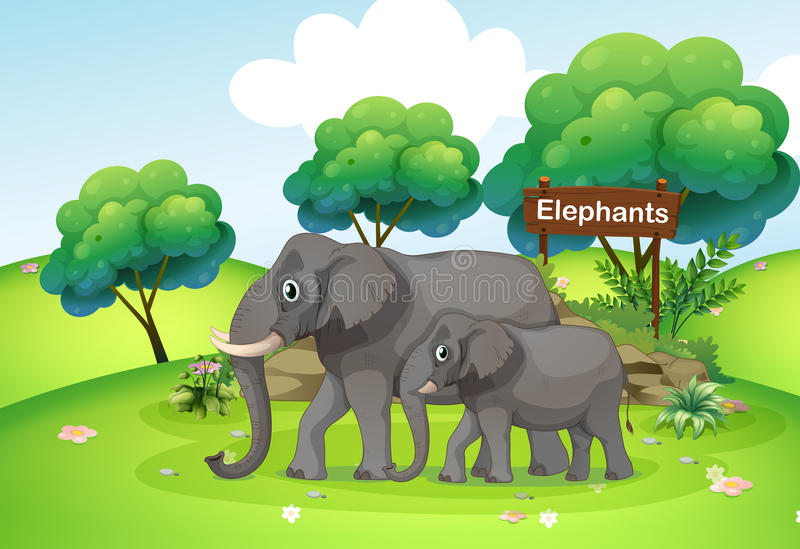 A small and a big elephant royalty free illustration