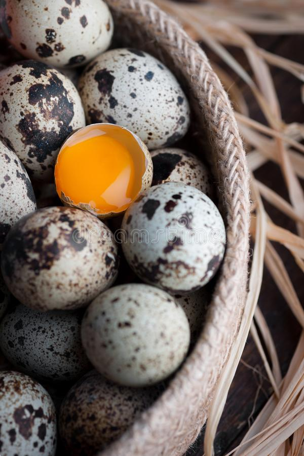 Bird eggs with one of them fracture and view the yolk royalty free stock image