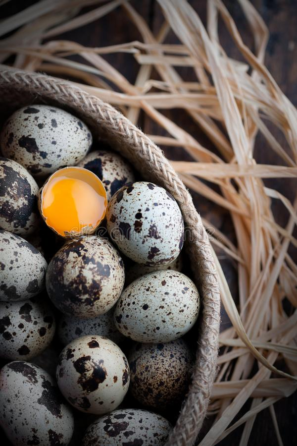 Bird eggs with one of them fracture and view the yolk royalty free stock photo