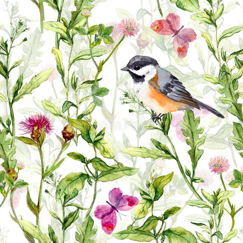 Download Small Bird In Spring Meadow Flowers, Butterflies. Repeated Pattern. Watercolor Stock Photo - Image of field, design: 76346212