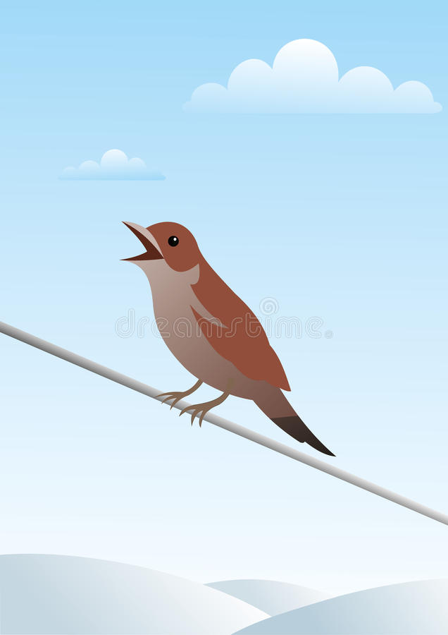 Download Small bird on a wire stock vector. Illustration of drawing - 17706196