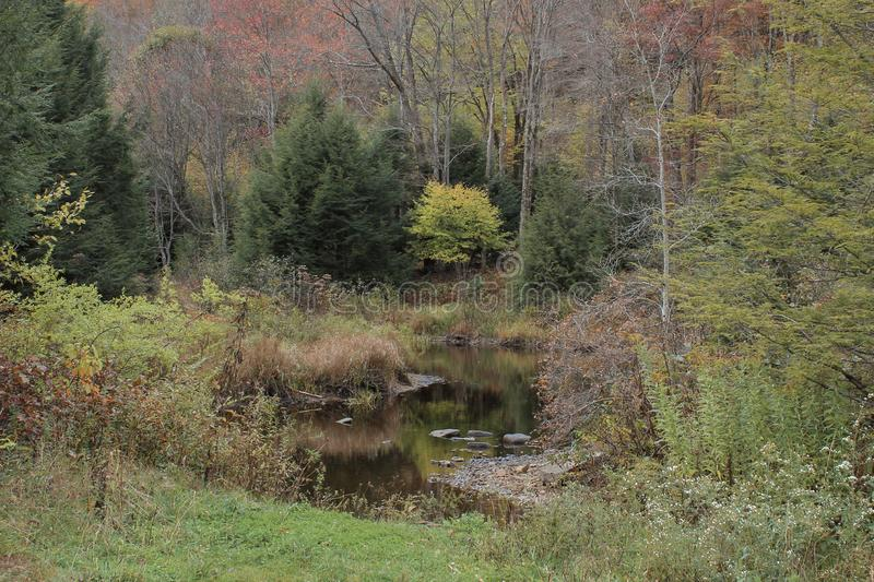 Small body of water in wooded area. Fall, autumn, october, woods, forests, creek, river, rocks, trees, leaves, color, changing, reflection, foresr, mountain stock image