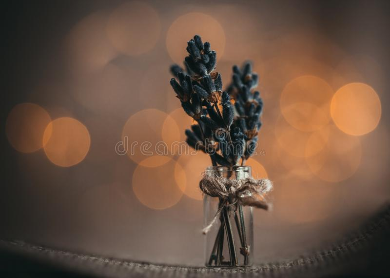 A small bouquet of lavender flowers on a brown background with Golden yellow bokeh light close up. Bunch of lavender in a tiny royalty free stock images