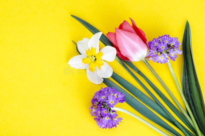 Small bouquet of spring garden flowers on bright background. stock image