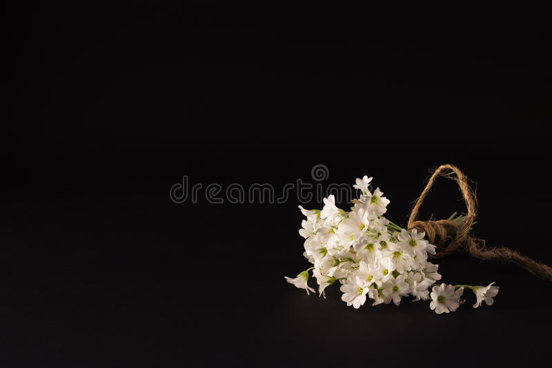Small bouquet of white flowers on a black background. Bouquet of small white flowers on a black textural background royalty free stock photography
