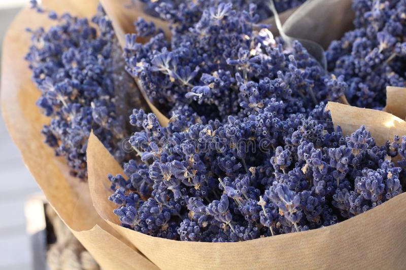 Small bouquets of lavender in paper royalty free stock image