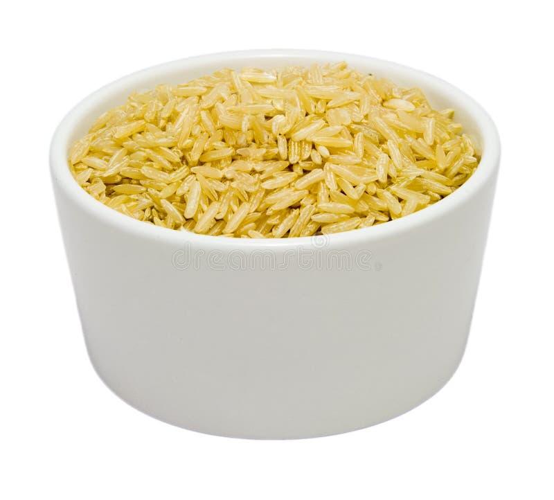 Small Bowl of Dry Brown Jasmine Rice royalty free stock photo