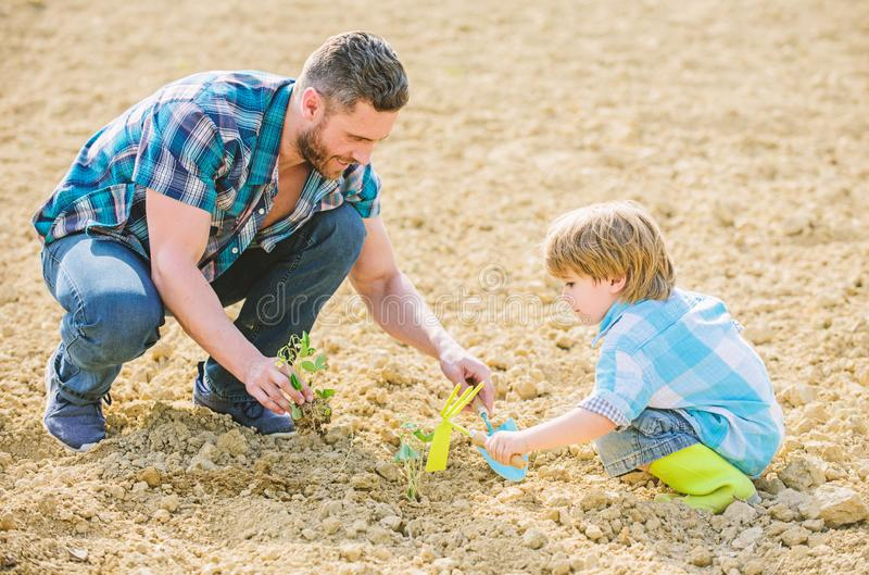 Small boy child help father in farming. rich natural soil. Eco farm. father and son planting flowers in ground. new life. Soils fertilizers. happy earth day royalty free stock photo