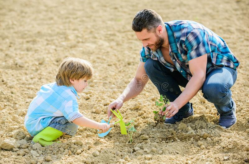 Small boy child help father in farming. rich natural soil. Eco farm. father and son planting flowers in ground. new life. Soils fertilizers. happy earth day royalty free stock photos