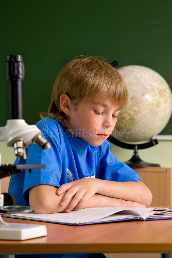 Small boy is concentrated with reading royalty free stock images