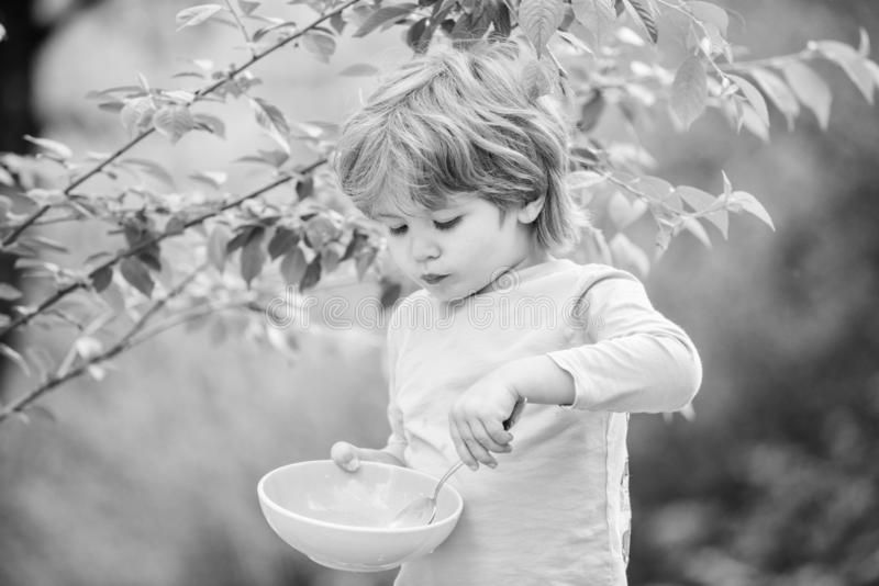 Small boy eating outdoor. Child development. Little boy eat healthy food. childhood happiness. healthy food and dieting royalty free stock photography