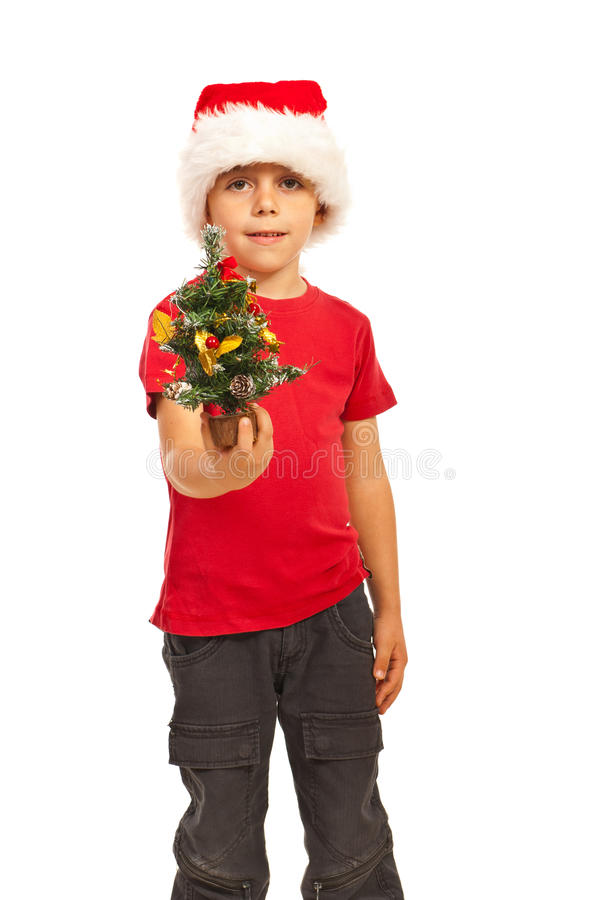 Small boy giving Christmas tree. Small boy with Santa hat giving miniature Christmas gift isolated on white background stock photos