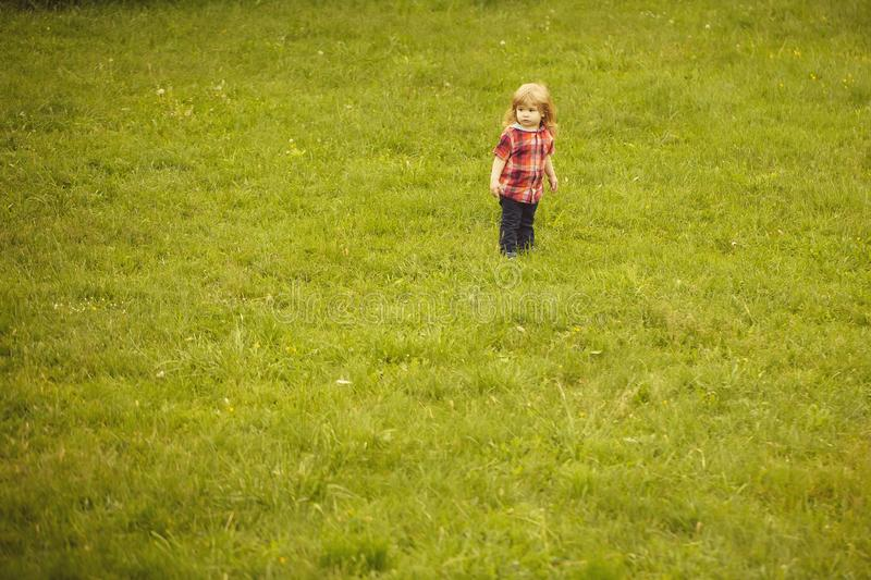 Small boy on green grass. Small boy child with long blonde hair in checkered shirt playing standing on green grass field outdoor on natural background, copy stock photos