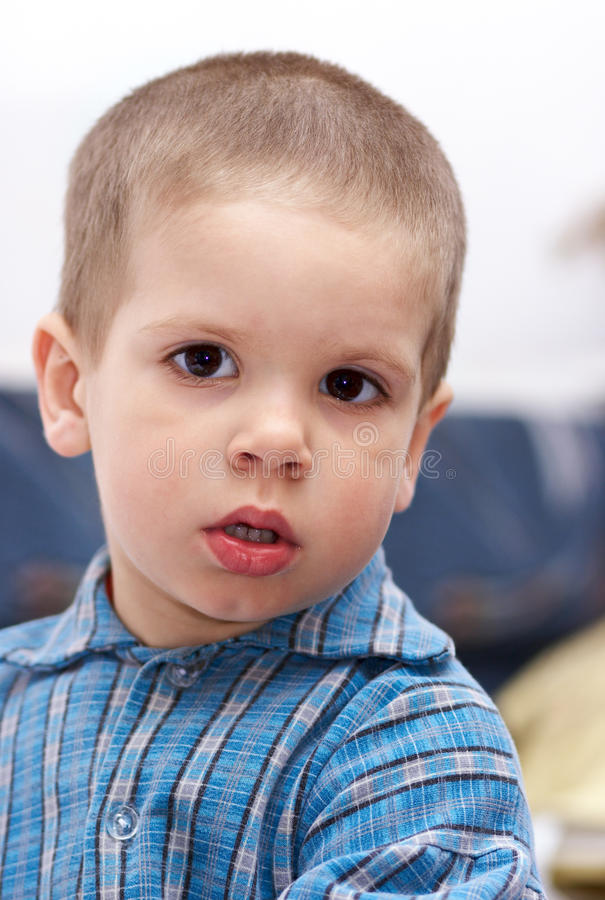 Small boy (portrait) royalty free stock photo