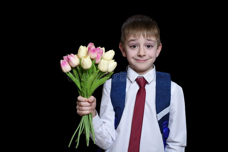 Small boy in a shirt with tie and school bag holding a bouquet of tulips. Isolate on black background royalty free stock photo