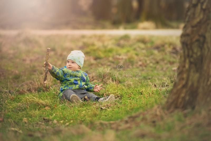 Small boy is sitting on grass and handling stick in spring park near big tree. Lifestyle stock photo